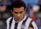 Newcastle United/Reprodução