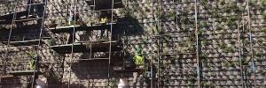 Superintendência Regional do Trabalho de São Paulo
