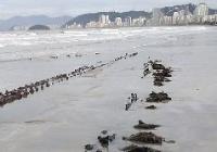 Divulgação/Prefeitura de Santos